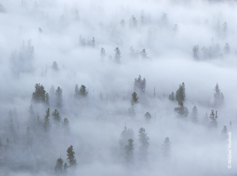 Ергаки Туманное утро