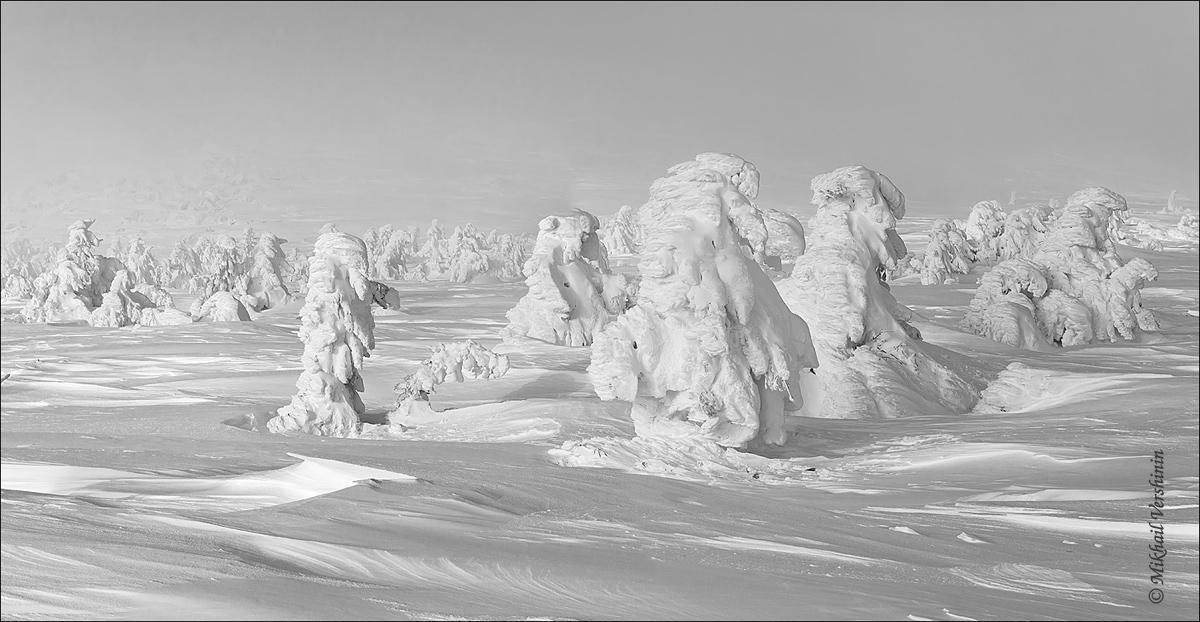Снежные тролли
