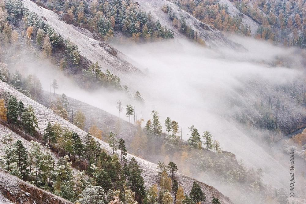 Первый снег. Туман. Столбы.
